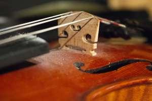 violon de l'Harmonie de Sonsay