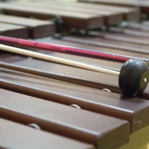Xylophone de l'école de musique